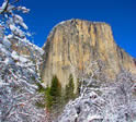Yosemite-Photos-Winter