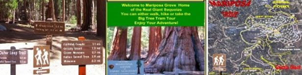 yosemite-travel-guide